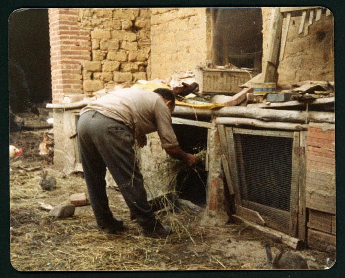 Eugenio Castro dando de comer a los conejos en Castro del Condado.