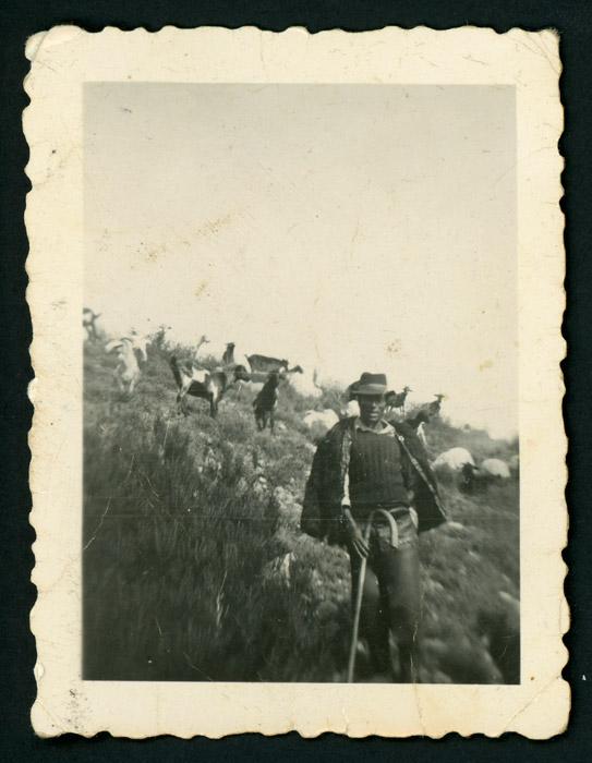 Efigenio Domínguez de pastor con el rebaño
