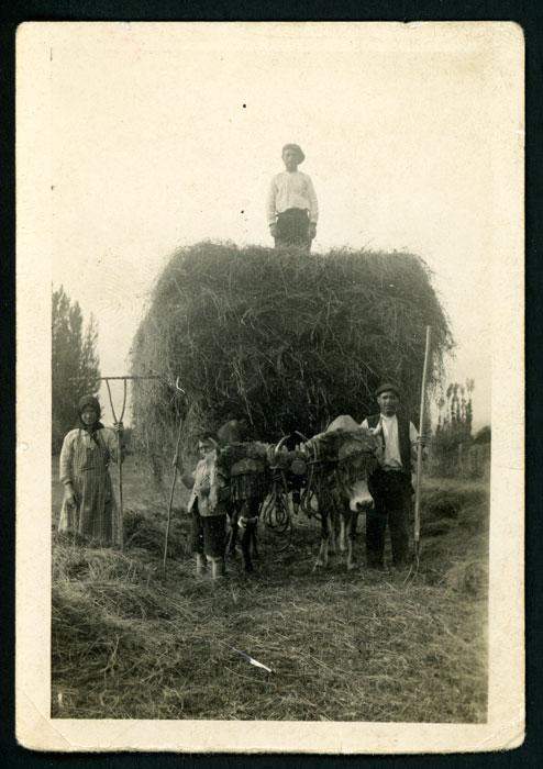 El abuelo Santiago, Enedina, Cesáreo y Germán con el carro de hierba en una finca de Cerezales del Condado