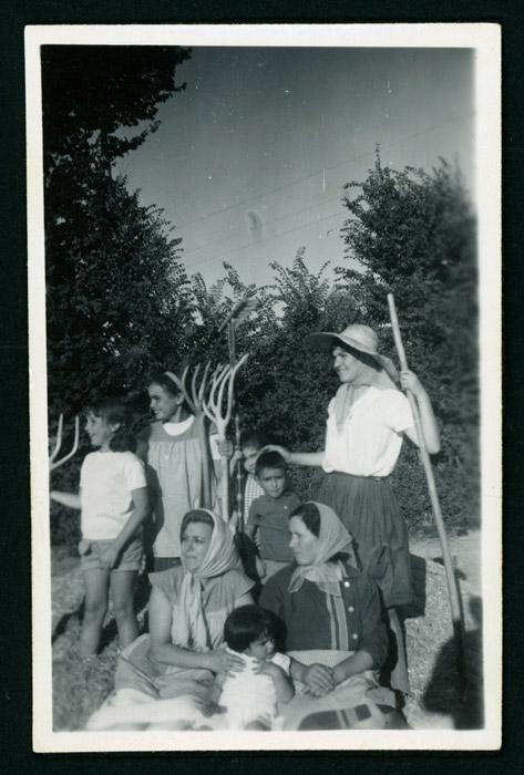 Mª Dolores González y amigos trillando en la era de Castro del Condado