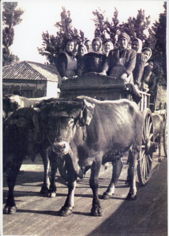 Grupo de mujeres en un carro yendo de hacendera en Ambasaguas de Curueño