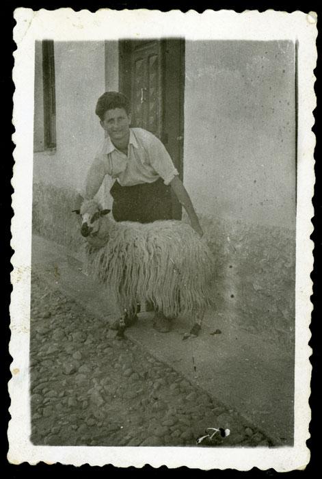 Benjamín González sujetando una oveja el día de San Pedro en Cerezales del Condado