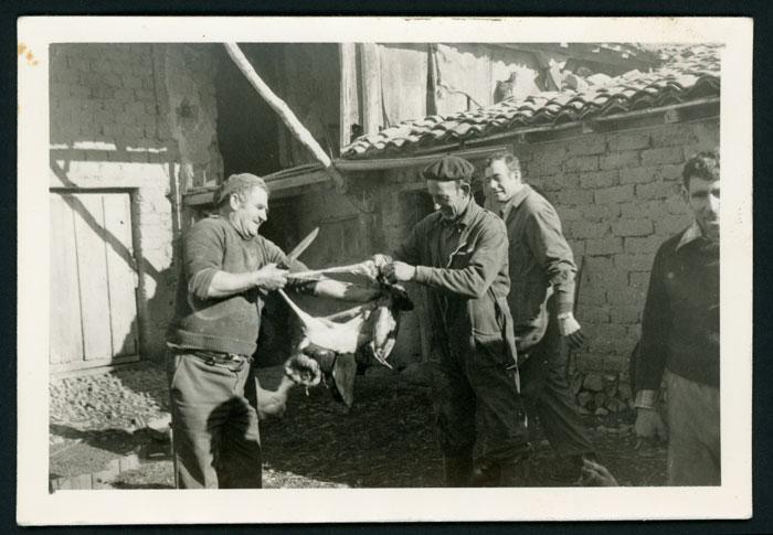 Matando el gocho en el corral de la casa familiar de Laureano González en Cerezales del Condado II