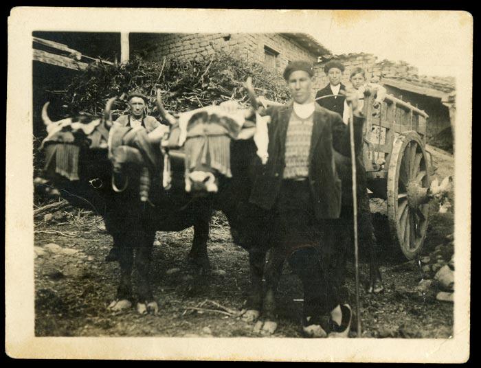 El tío Hermógenes con el carro en Castro del Condado