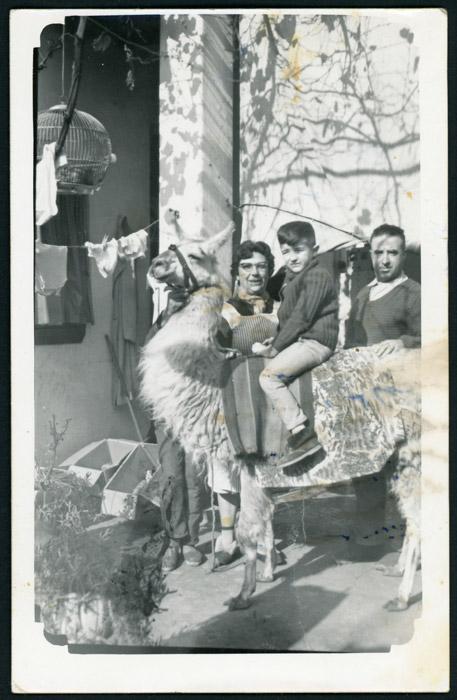 Epifanio de la Puente, María Rodríguez y su hijo José Luis de la Puente subido en una llama en Argentina