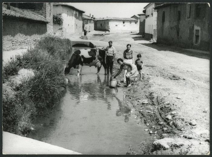 Altamira Fernández con la familia y la vaca Linda en el reguero de Cerezales del Condado