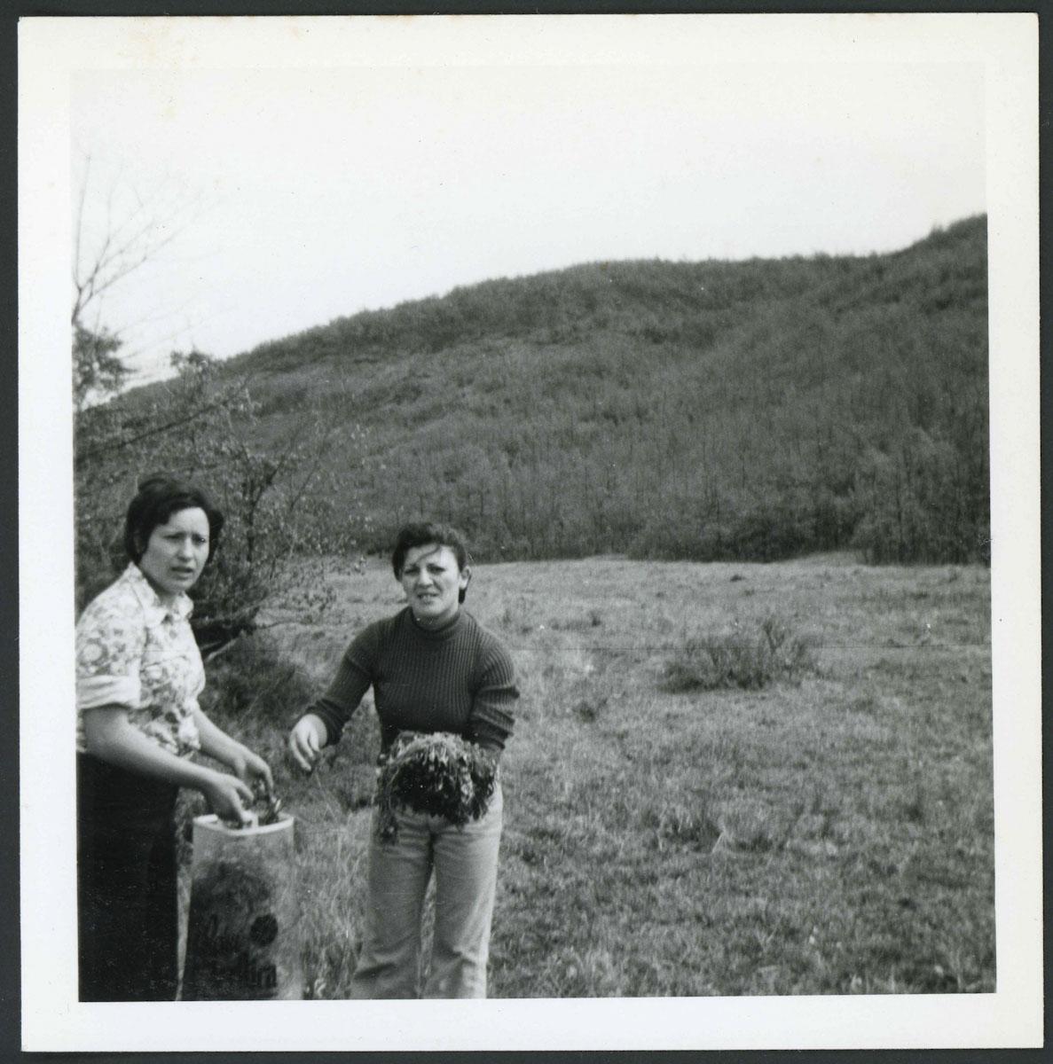 Inés Escapa y una amiga cogiendo berros en Hontoria