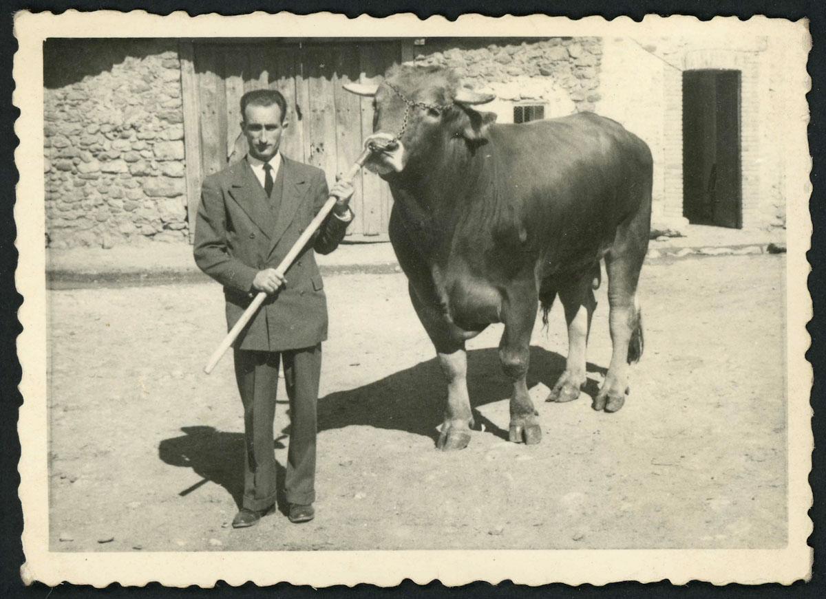 Nano Fernández posando con un toro en Lugán