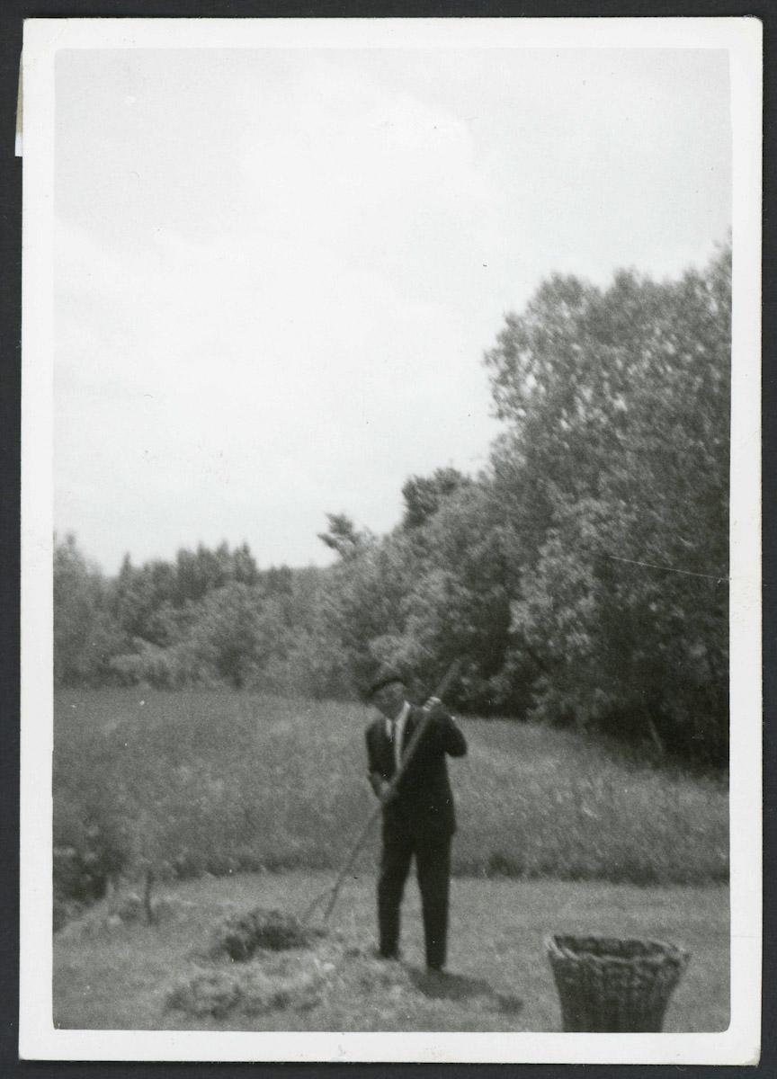 Próspero Campillo (padre) rastreando en la huerta