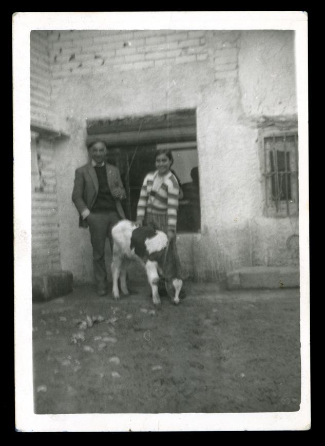 Socorro Sánchez con su padre y un ternero en el corral de su casa en Paradinas de San Juan